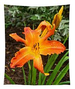 Dew Drops On Golden Lily Tapestry
