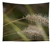 Dew On Ornamental Grass No. 1 Tapestry