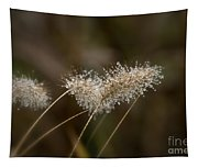 Dew On Ornamental Grass No. 2 Tapestry