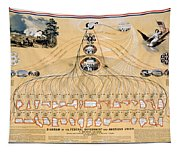 Diagram: American Union Tapestry