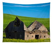 Dilapidated Barn Tapestry