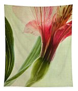 Dim Colours Tapestry