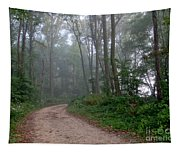 Dirt Path In Forest Woods With Mist Tapestry