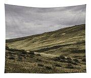 Disaster Peak Road Valley Tapestry