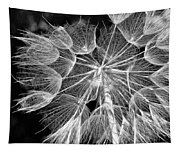 Ditch Lace Bw Tapestry