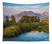 Divide Creek Morning Tapestry