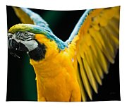 Do Your Exercise Daily Blue And Yellow Macaw Tapestry