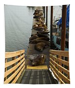 Dock Sea Lions Astoria Or 1 A Tapestry
