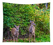 Doe A Deer Tapestry