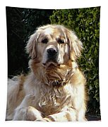 Dog On Guard Tapestry