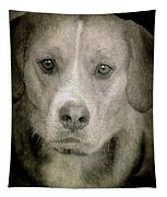 Dog Posing Tapestry