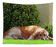 Dog Relaxing Tapestry