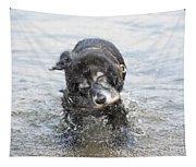 Dog Shake Tapestry