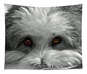 Coton Eyes Tapestry