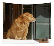 Doggie In The Window Tapestry