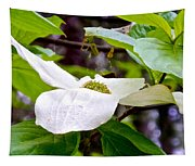 Dogwood In Yosemite Valley-2013 Tapestry