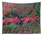 Dogwood Leaves In The Fall Tapestry