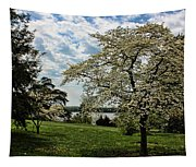 Dogwoods In Summer Tapestry