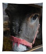 Donkey Behind Fence Tapestry