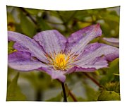Donna's Purple Flower Tapestry