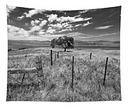 Don't Fence Me In - Black And White Tapestry