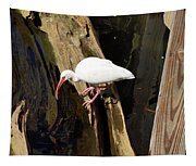 White Ibis Bird Tapestry