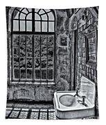 Dormer Bathroom Side View Bw Tapestry