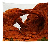 Double Arches Tapestry