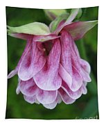 Double Columbine Named Pink Tower Tapestry