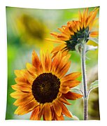 Double Dose Of Sunshine Tapestry