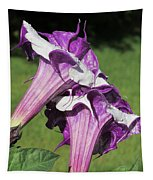 Double Purple Datura 8 Tapestry