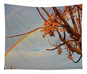 Double Rainbow Tapestry