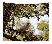 Dove In Autumn Oak Tree Lower Lake Ca Tapestry