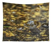 Down By The Bubbling Spring Tapestry