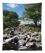 Down From The Mountains Tapestry