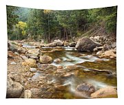 Down Stream Tapestry