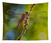 Dragon Fly Or Not Tapestry