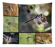 Dragonflies On Twigs Collage Tapestry