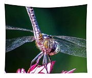 Dragonfly Close Up Tapestry