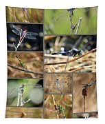 Dragonfly Collage Tapestry