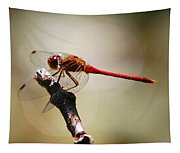 Dragonfly Light Tapestry