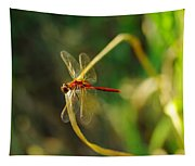 Dragonfly On A Summer Day Tapestry