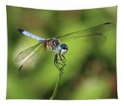 Dragonfly Square Tapestry
