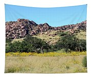 Dragoon Mountains Tapestry