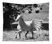 Dream Horse Tapestry