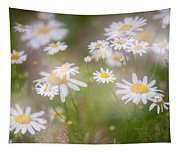Dreamy Daisies On Summer Meadow Tapestry