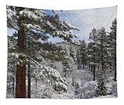 Distant Peak Tapestry