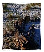 Drift Wood Tapestry