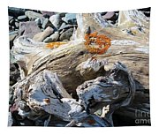 Driftwood Abstract Tapestry