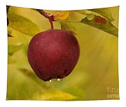 Droplets From A Red Apple   Tapestry